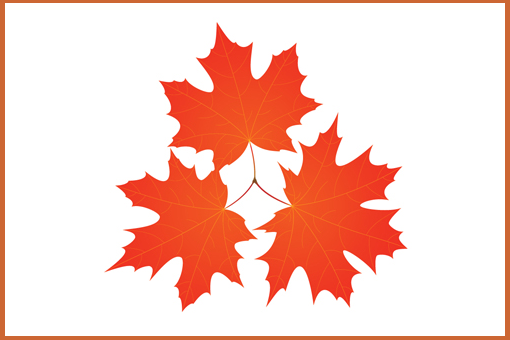 Relaunching Maple Leaf Consultants
