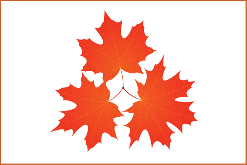 Launching Maple Leaf Consultants